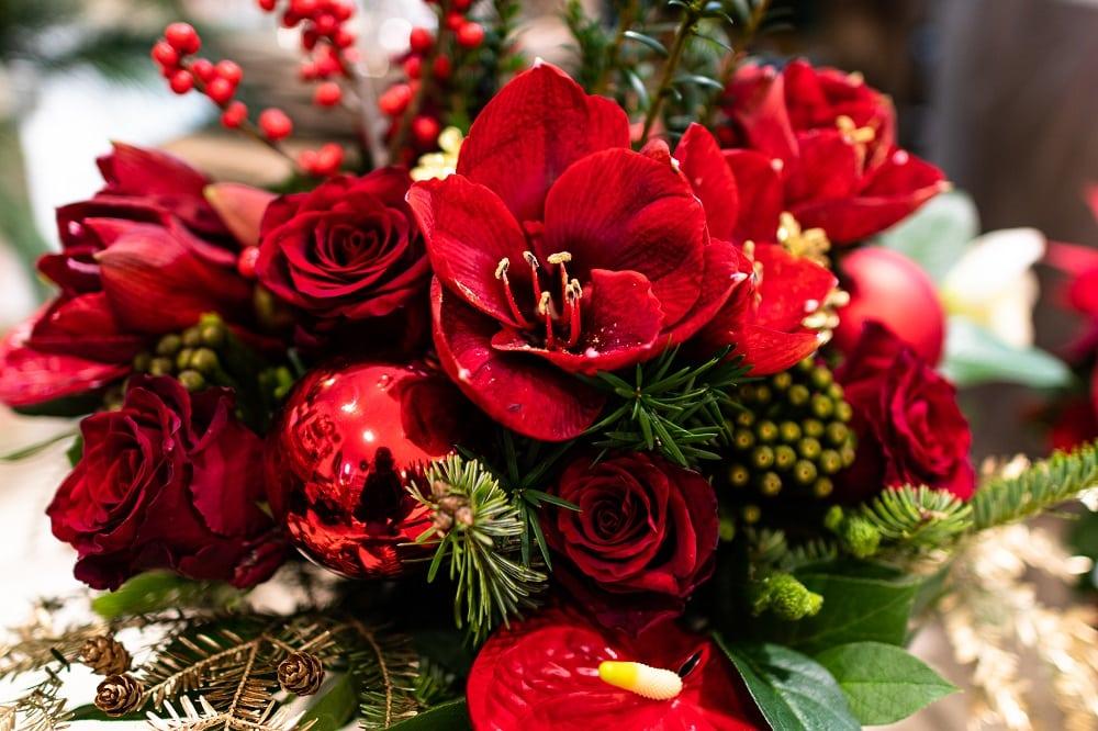 Weihnachtsdekoration, Weihnachten, Klagenfurt, Geschenkideen, Weihnachtsdeko, Floristen, Winterdekoration, Wintersaison, Amaryllis, rote Blumen, Floristen, Weihnachtsgesteck, Blumen Matzner