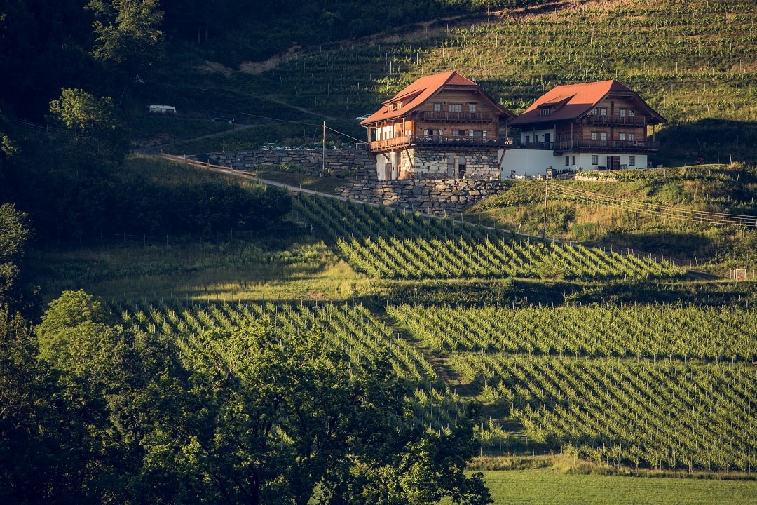 Weingut Karnburg auf historischem Boden