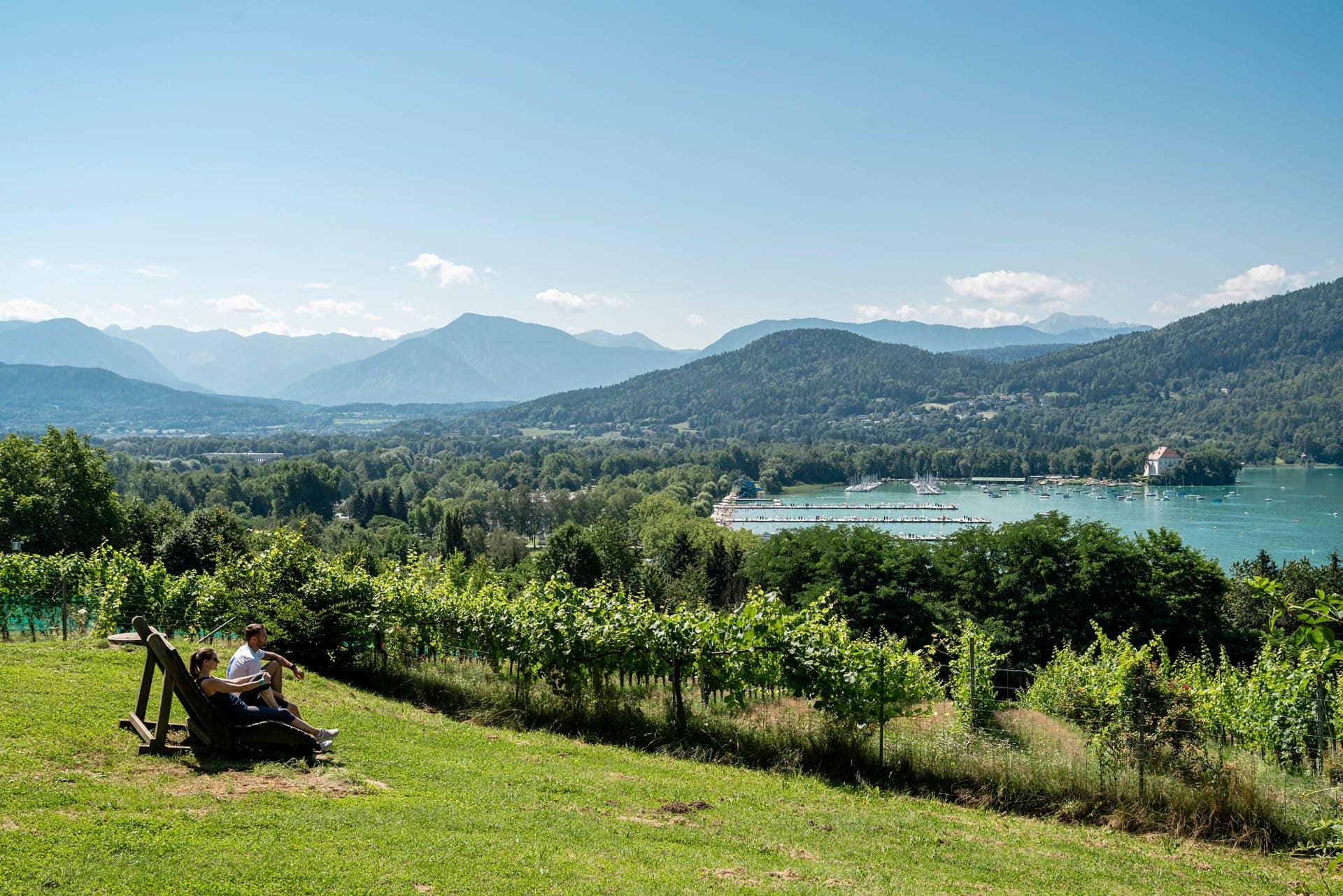 Seewiese mit Blick auf Weingarten und Wörthersee