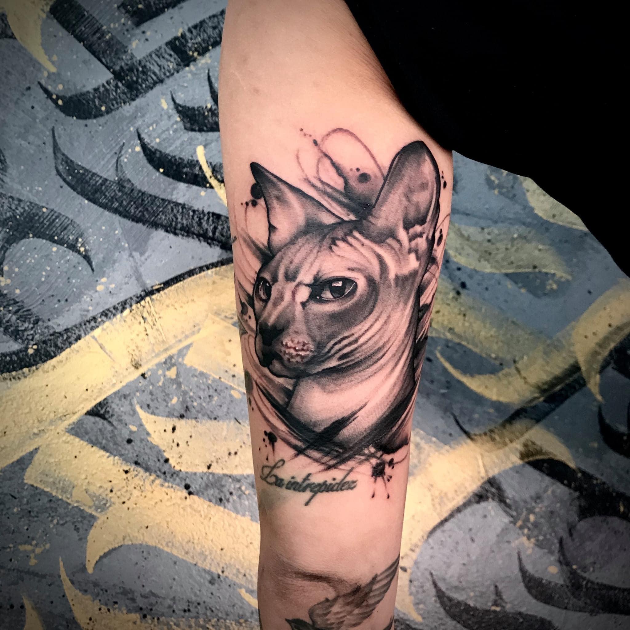 Katze, schwarz, Tom Kropfitsch, Tattoo, Tattoostudio, tätowieren, Tattooarist, 9020 Klagenfurt am Wörthersee