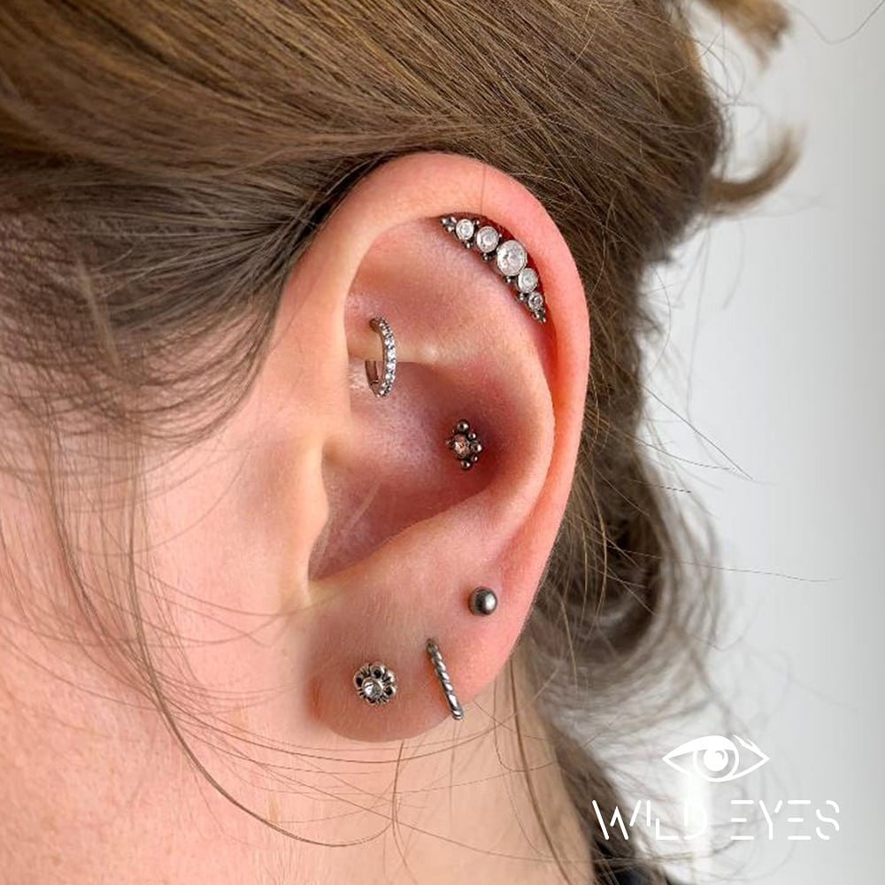 Ohrpiercing, Helix, Ohrring, Rook, Conch, Piercing, Piercingstudio 9020 Klagenfurt am Wörthersee, Wild Eyes