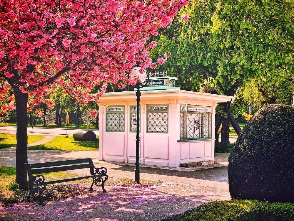 Künstlerhaus, VADA, kleinstes Theater, Goethepark, Kirschblüte, 9020 Klagenfurt am Wörthersee, Frühling, Blüten, rosa