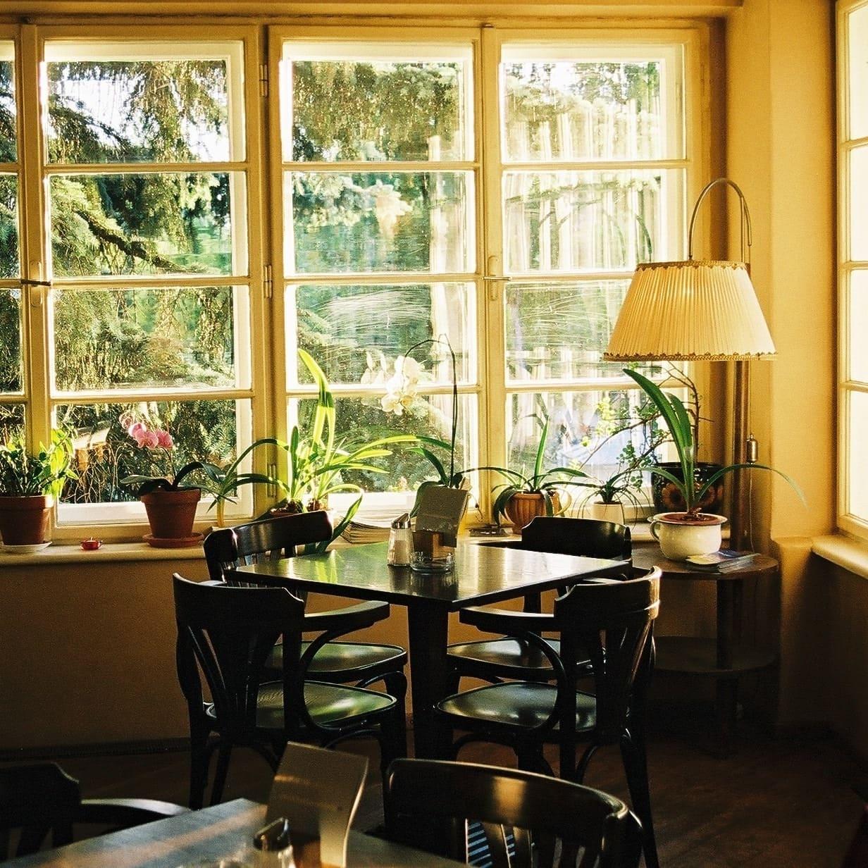 ein eckiger Tisch mit vier Stühlen am Fenster im Lendhafencafé, Grünpflanzen im Fenster, in der Ecke eine Stehlampe mit Stoffbezug