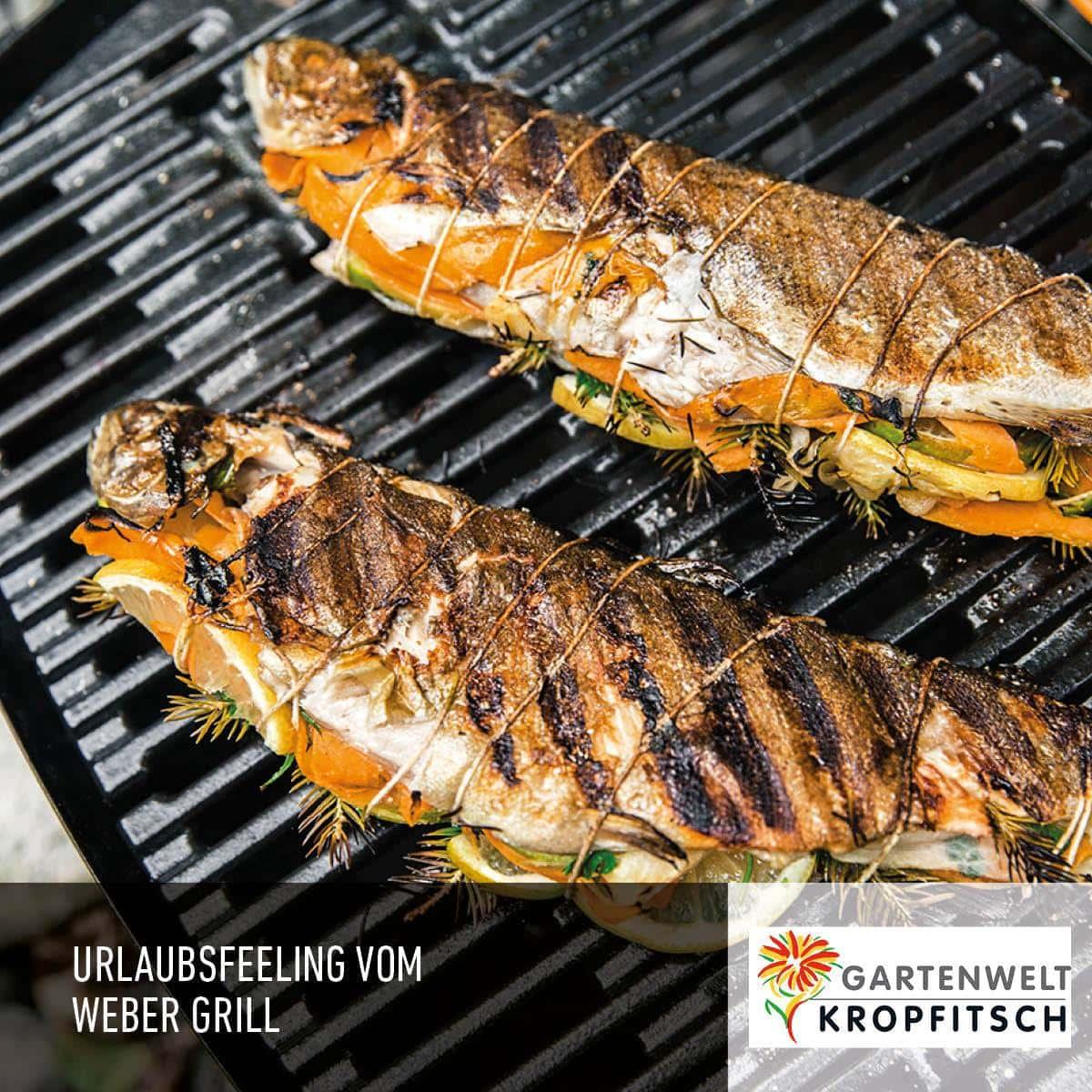 zwei Grillfische mit Zitronenscheiben, Paprika und Kräutern eingewickelt liegen auf einem Webergrill der Gartenwelt Kropfitsch, dabei steht Urlaubsfeeling vom Webergrill