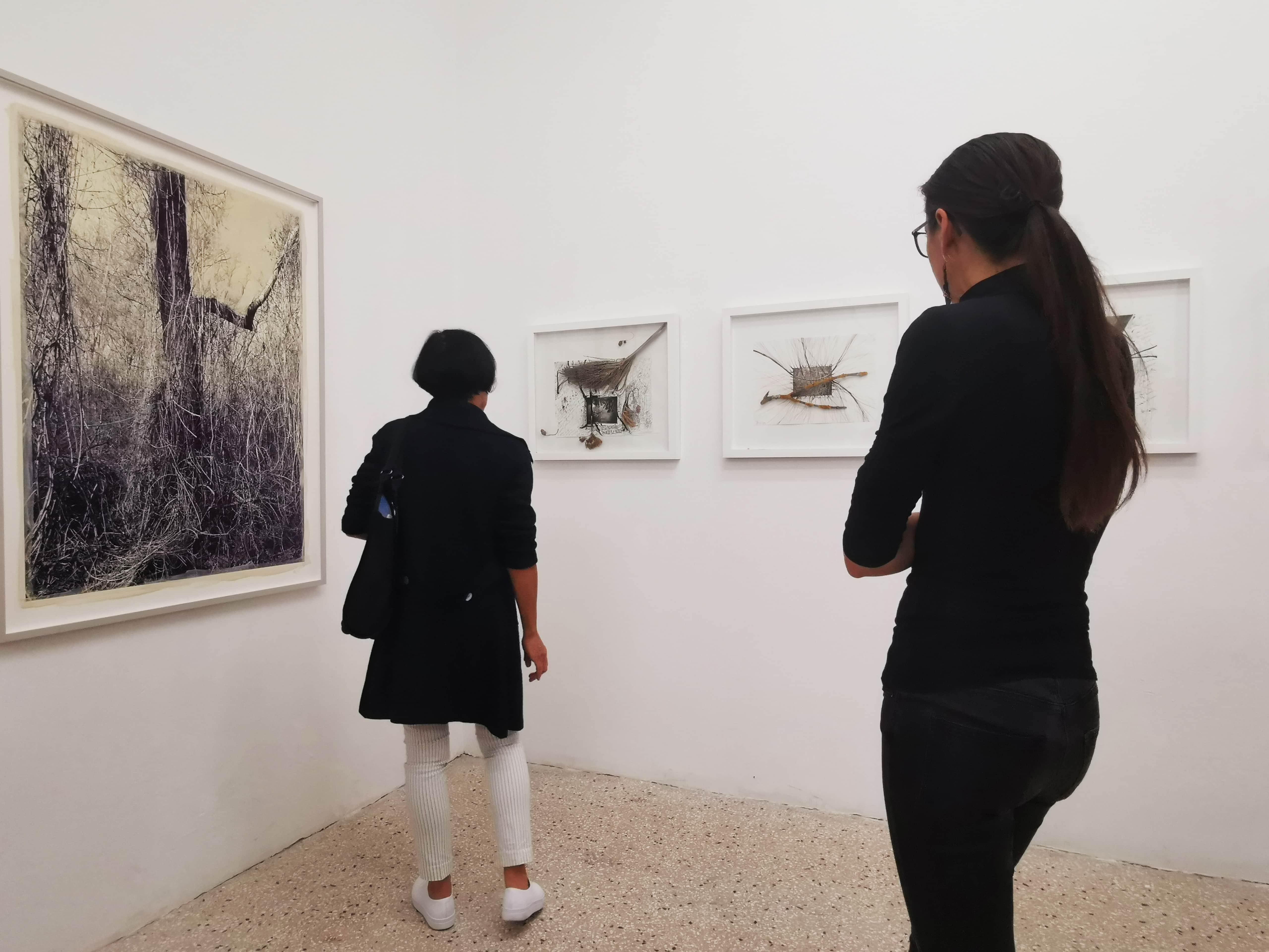 Raum für Fotografie - Ausstellung roots&bonds von Regina Anzenberger 2019
