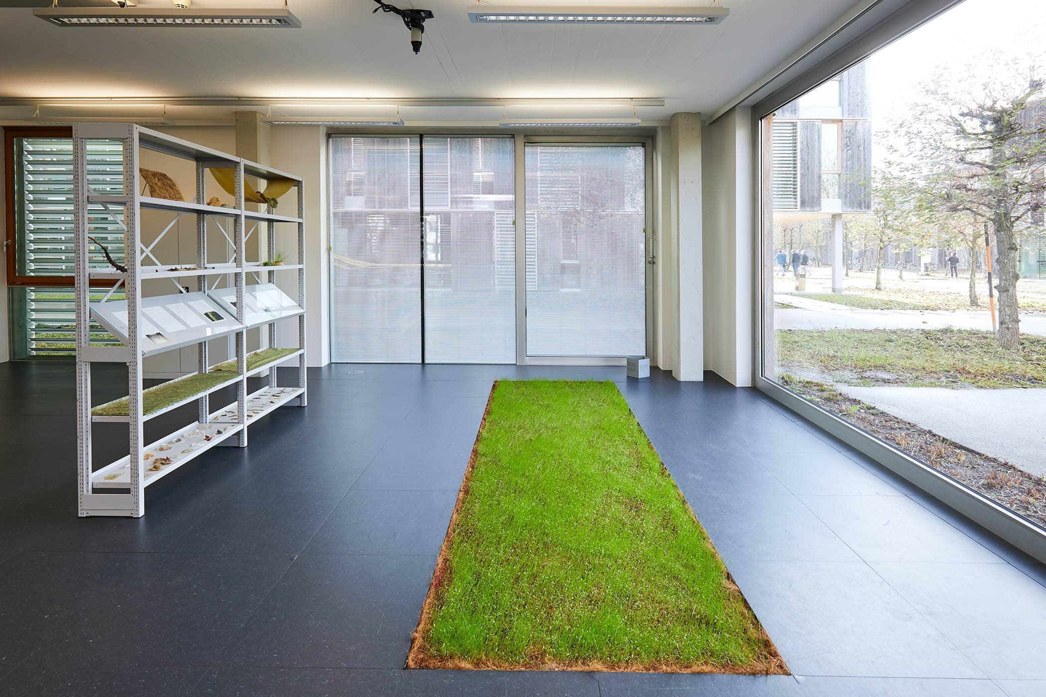 Kunstraum Lakeside - Hangar Barcelona (c) Johannes Puch