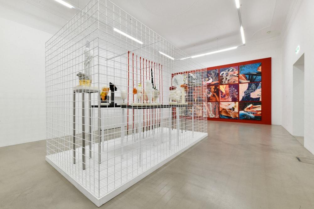 MMKK - Ausstellungsansicht Pepo Pichler (c) F. Neumüller